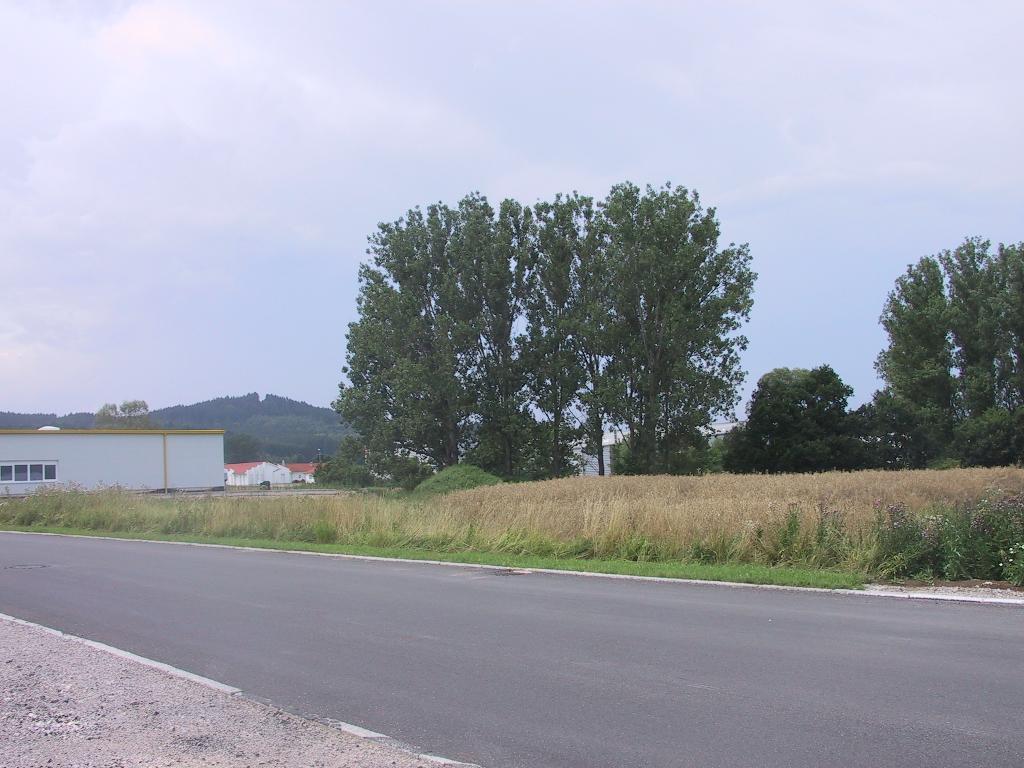 Gewerbefläche nördlich der Einsteinstraße