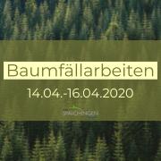 Waldbild mit Schritfzug